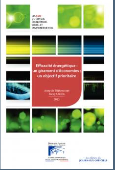 Rapport du CESE efficacité énergétique
