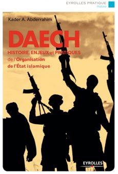 Daech : histoire, enjeux et pratiques de l'organisation de l'Etat islamique