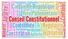 Le Conseil constitutionnel, une juridiction pas comme les autres