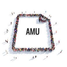 Assistance à maîtrise d'usage (AMU)